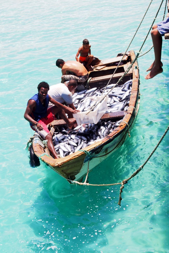 Cape Verde, Sal boat full of fish