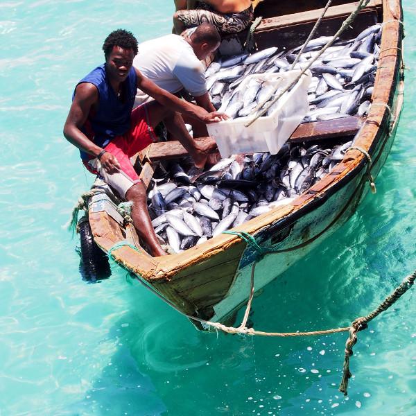 fishermen returned